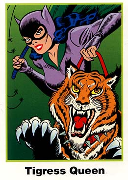 Batman Cards: No. 5 Catwoman (Ultra RARE Set)