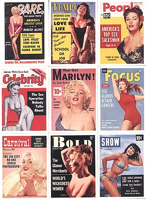 Pocket Pin-Ups Trading Card Set - NO Box